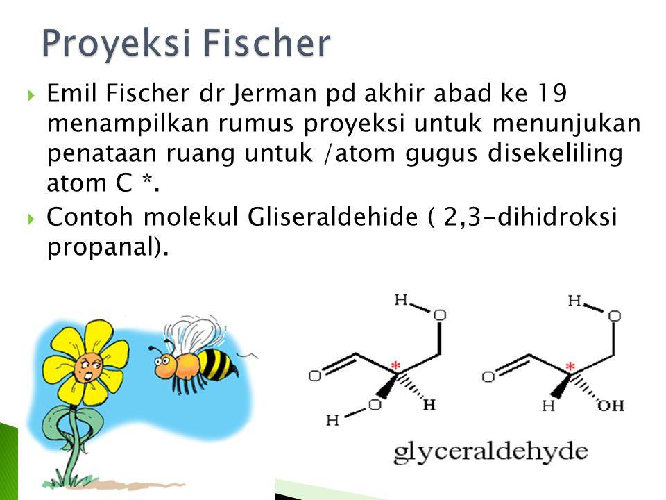 Proyeksi Fischer