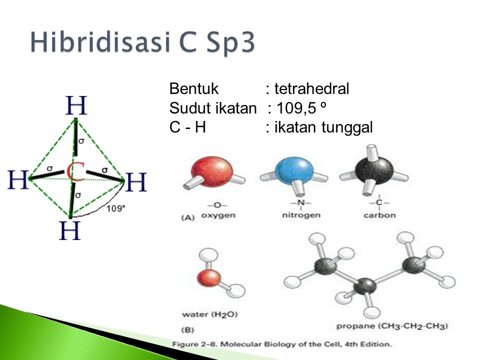 Hibridisasi C Sp3 Bentuk : tetrahedral Sudut ikatan : 109,5 º