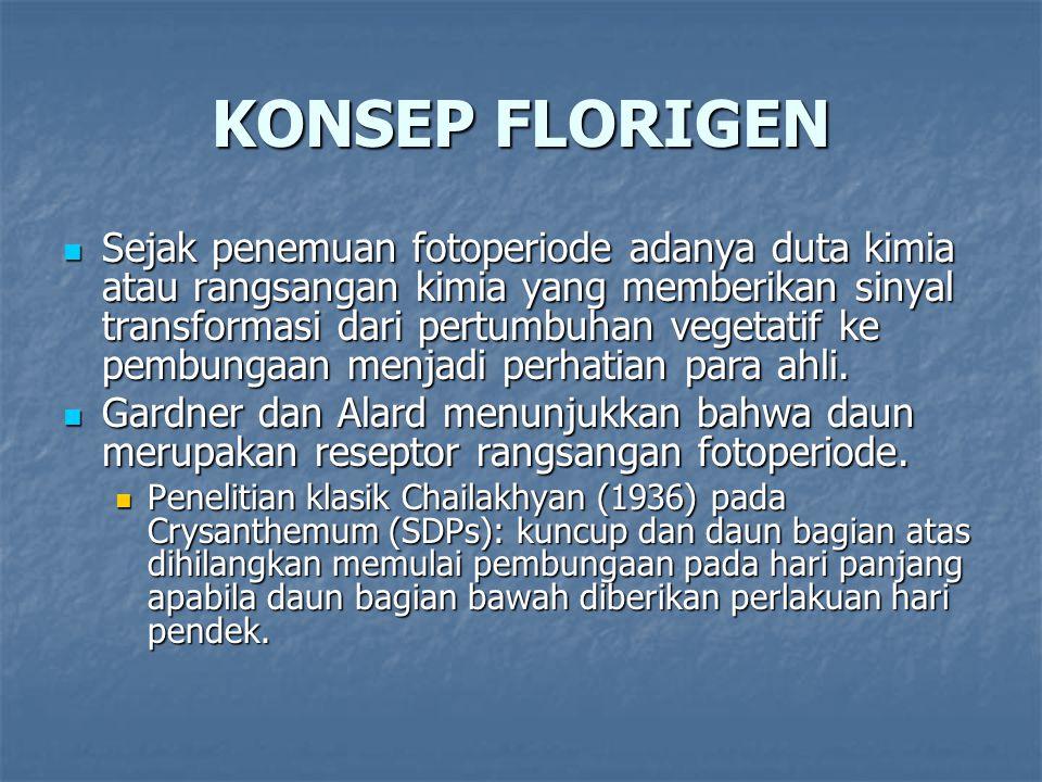 KONSEP FLORIGEN