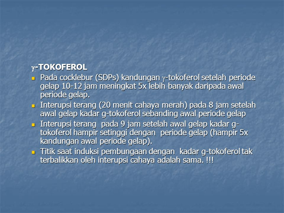 g-TOKOFEROL Pada cocklebur (SDPs) kandungan g-tokoferol setelah periode gelap 10-12 jam meningkat 5x lebih banyak daripada awal periode gelap.