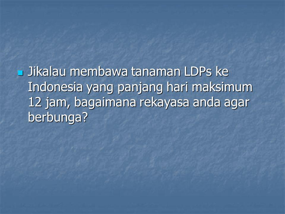 Jikalau membawa tanaman LDPs ke Indonesia yang panjang hari maksimum 12 jam, bagaimana rekayasa anda agar berbunga