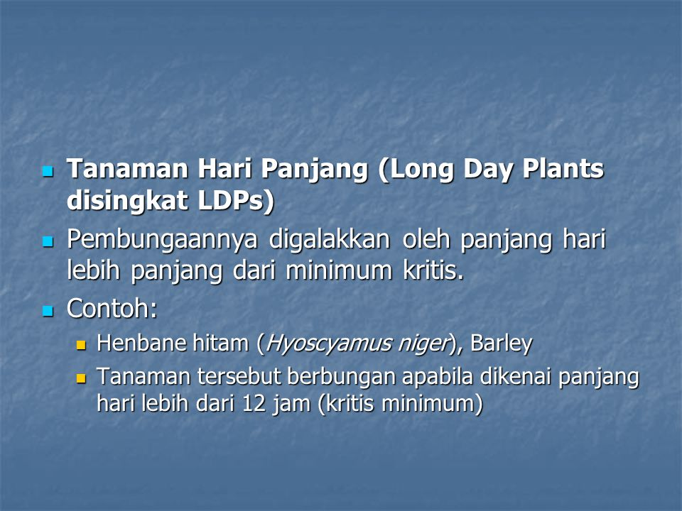 Tanaman Hari Panjang (Long Day Plants disingkat LDPs)