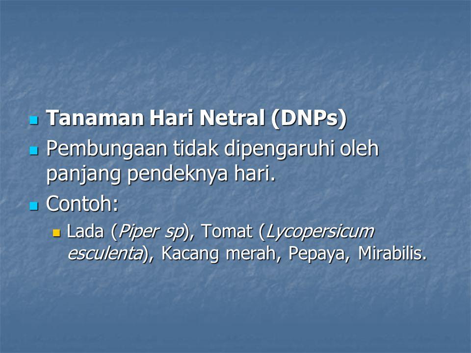 Tanaman Hari Netral (DNPs)