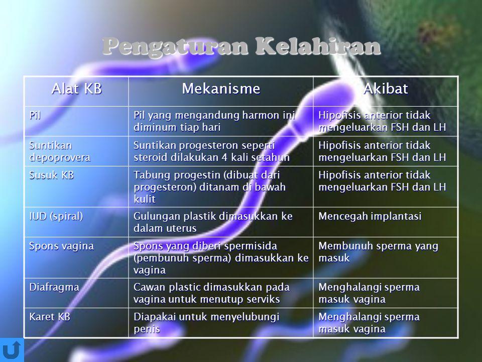 Pengaturan Kelahiran Alat KB Mekanisme Akibat Pil