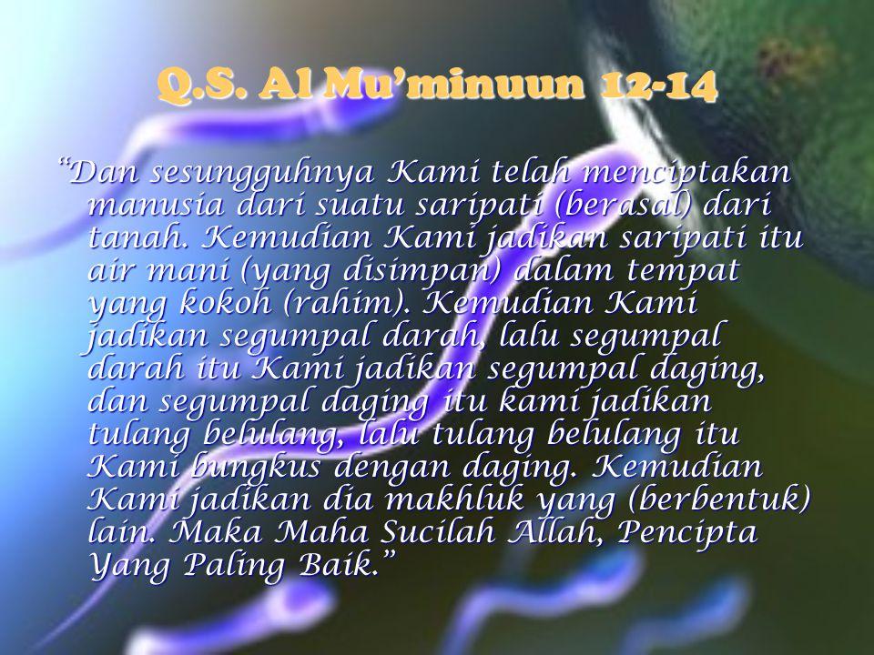 Q.S. Al Mu'minuun 12-14