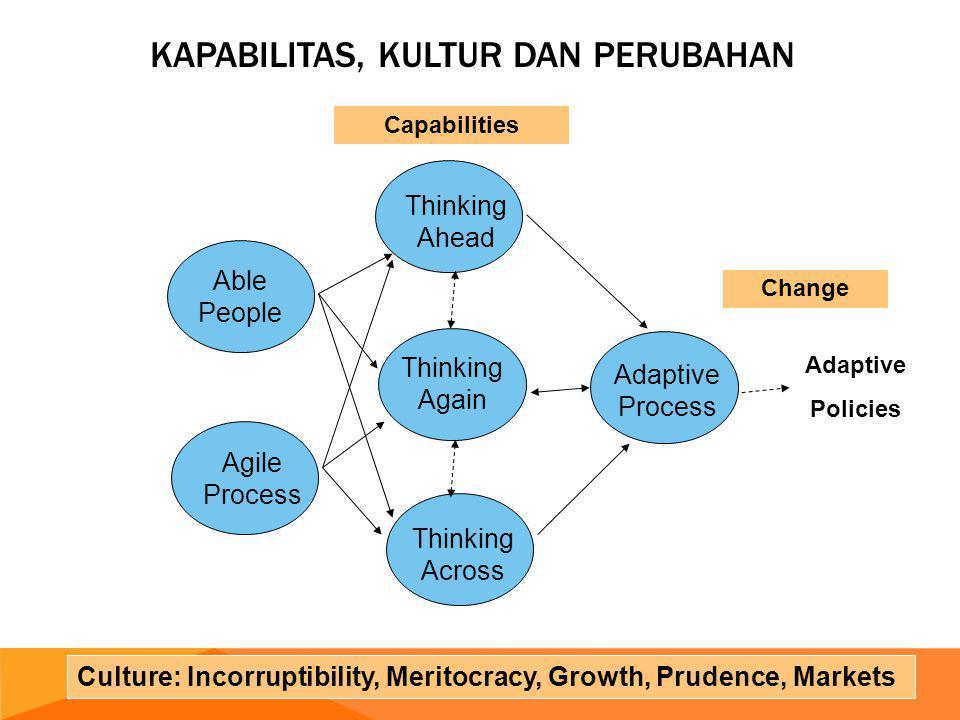 Kapabilitas, Kultur dan Perubahan