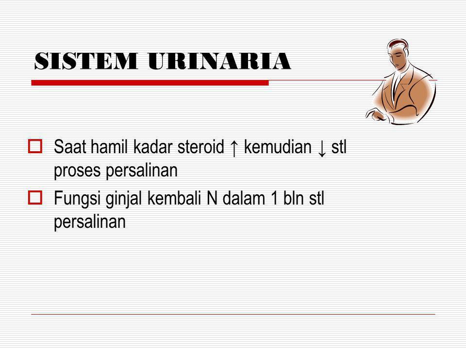 SISTEM URINARIA Saat hamil kadar steroid ↑ kemudian ↓ stl proses persalinan.