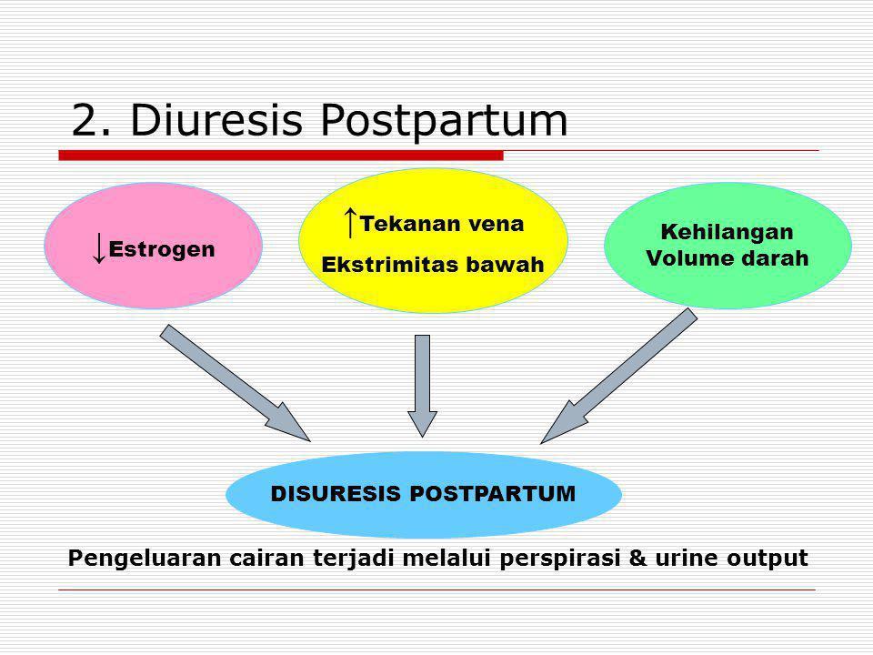 Pengeluaran cairan terjadi melalui perspirasi & urine output