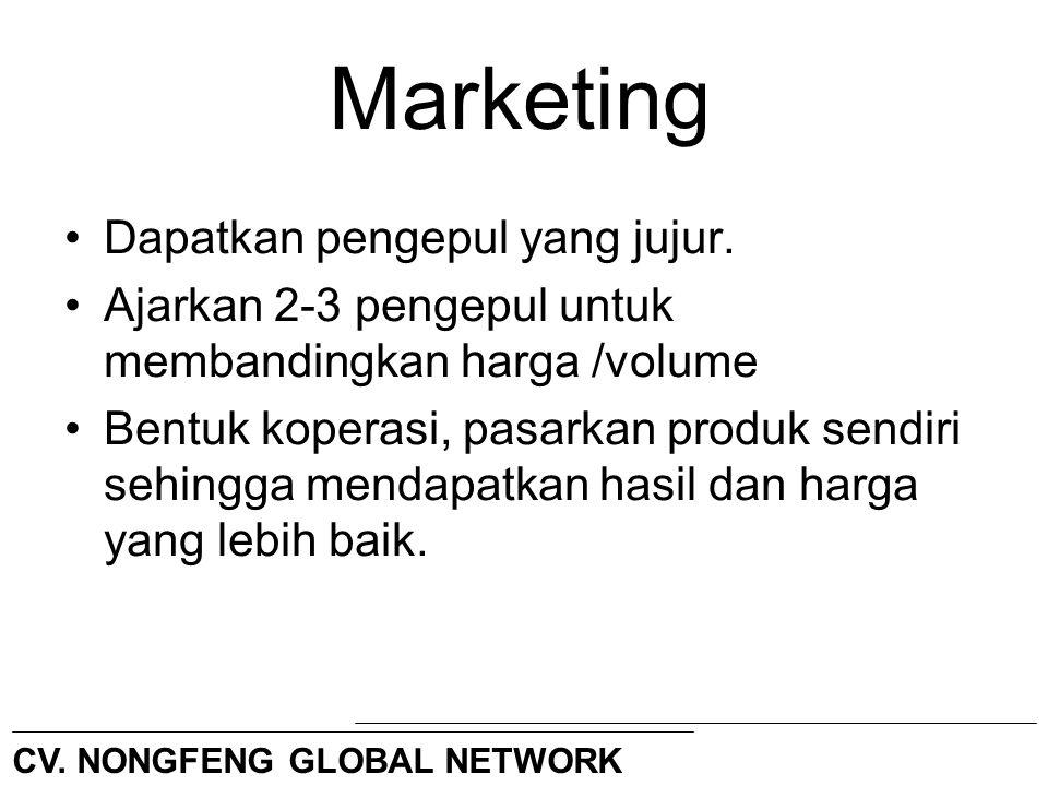 Marketing Dapatkan pengepul yang jujur.