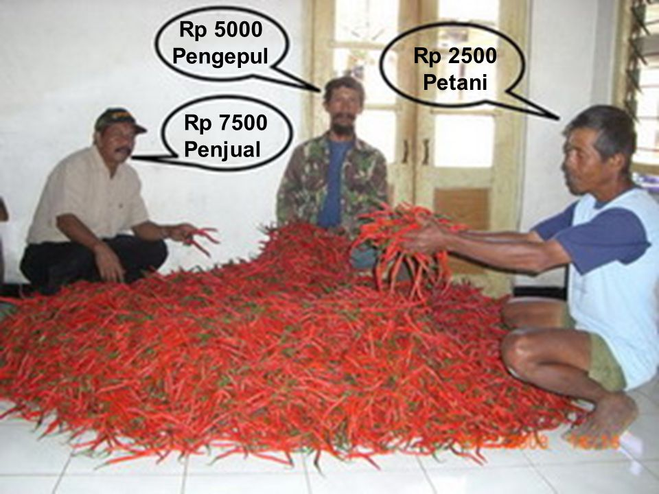 Rp 5000 Pengepul Rp 2500 Petani Rp. 2.500,- Per kg