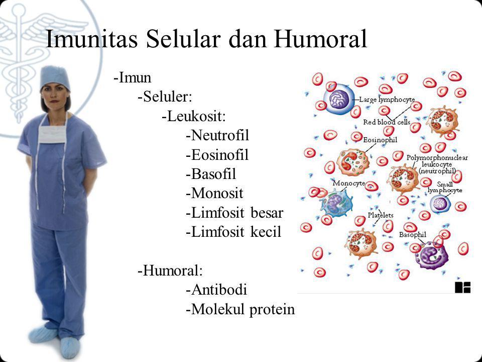 Imunitas Selular dan Humoral