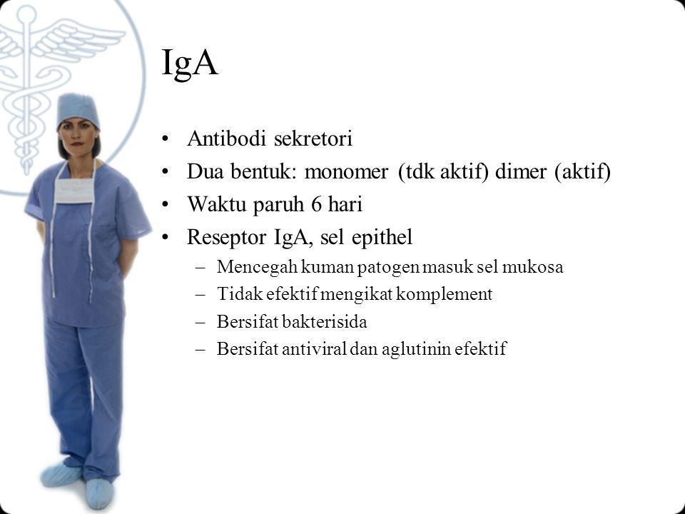 IgA Antibodi sekretori Dua bentuk: monomer (tdk aktif) dimer (aktif)