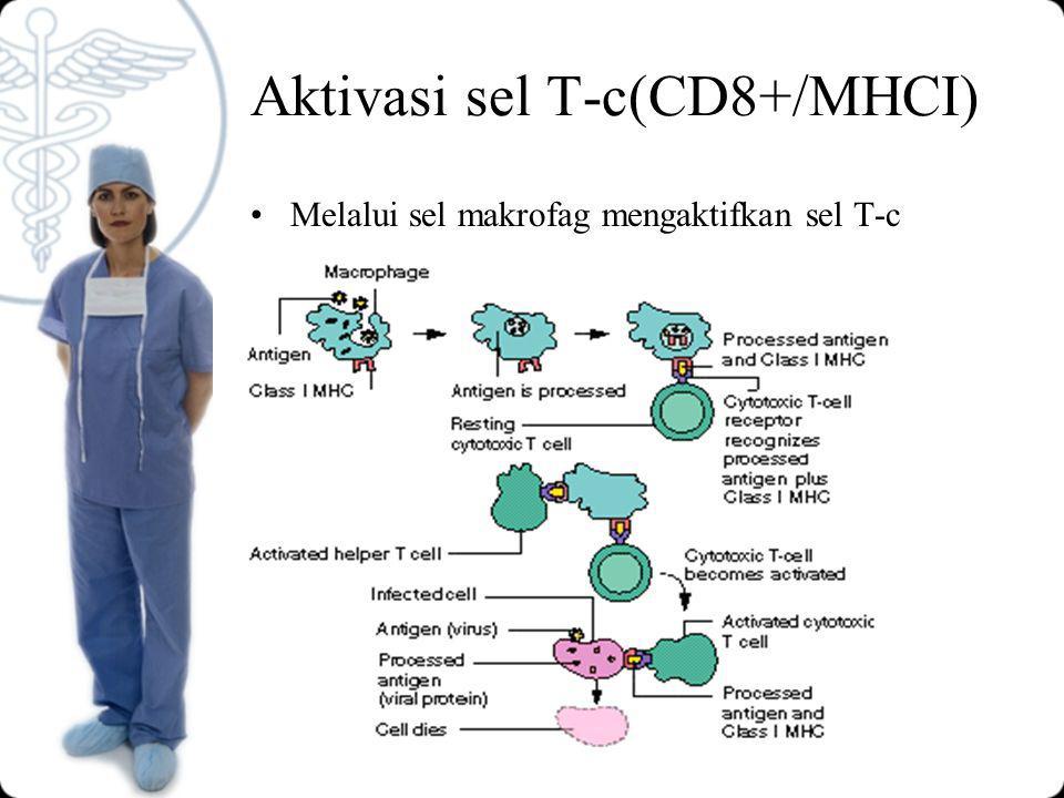 Aktivasi sel T-c(CD8+/MHCI)