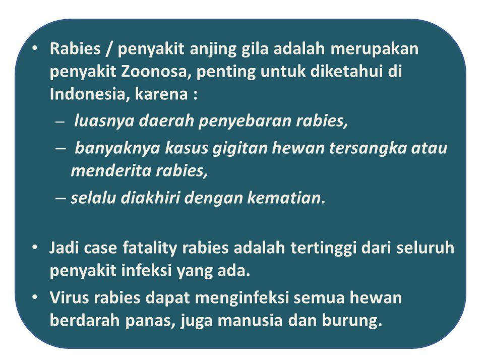 banyaknya kasus gigitan hewan tersangka atau menderita rabies,