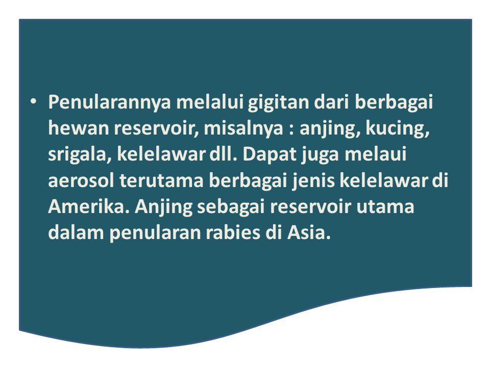 Penularannya melalui gigitan dari berbagai hewan reservoir, misalnya : anjing, kucing, srigala, kelelawar dll.