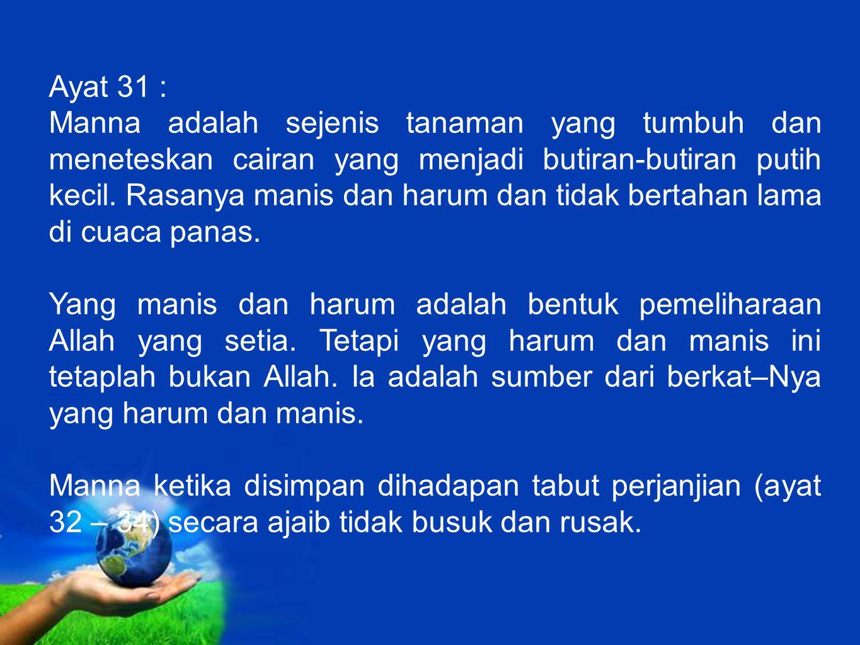 Ayat 31 :