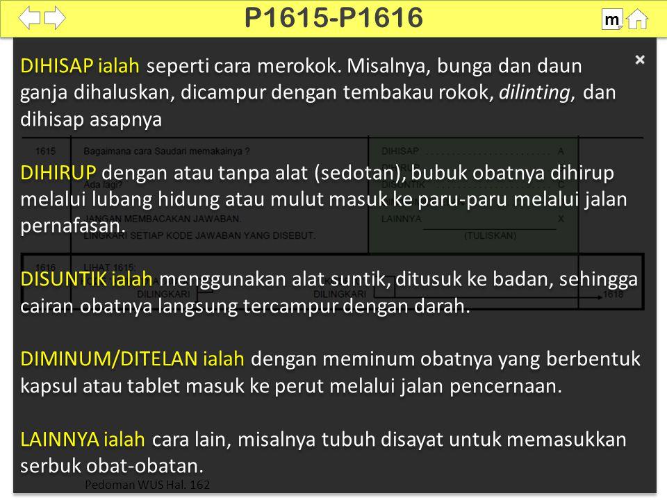 P1615-P1616 m. 100% DIHISAP ialah seperti cara merokok. Misalnya, bunga dan daun.