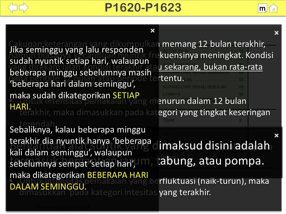 P1620-P1623 m. SDKI 2012. 100%