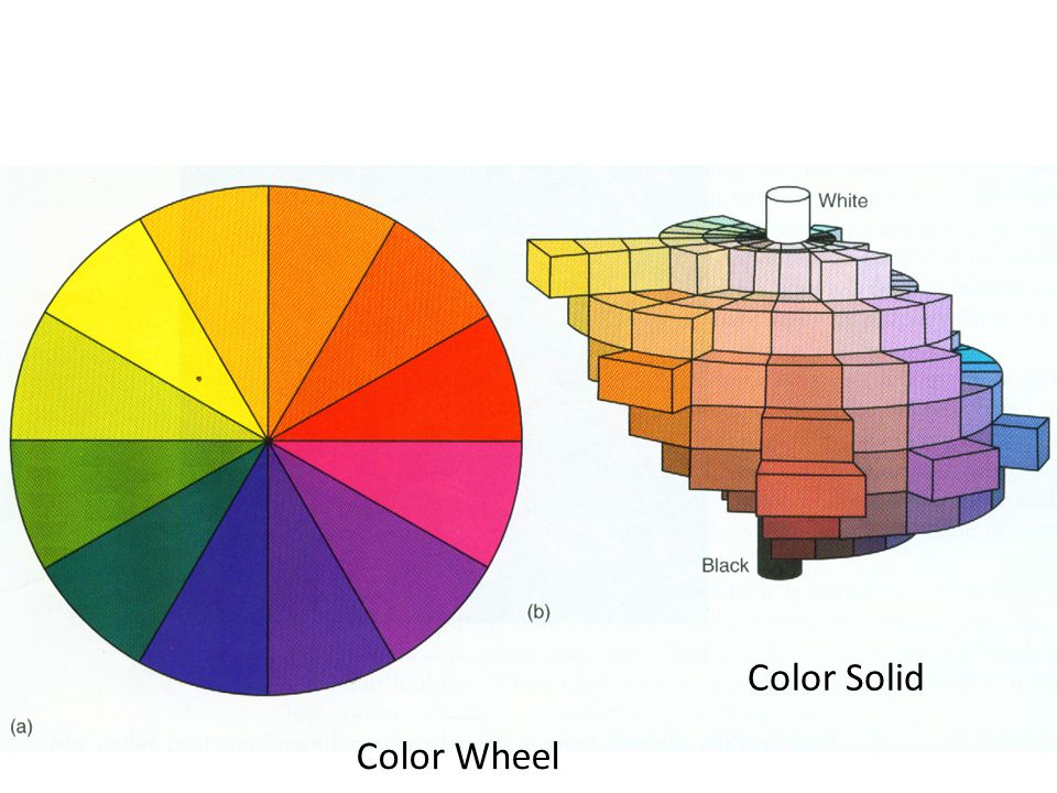 Color Solid Color Wheel