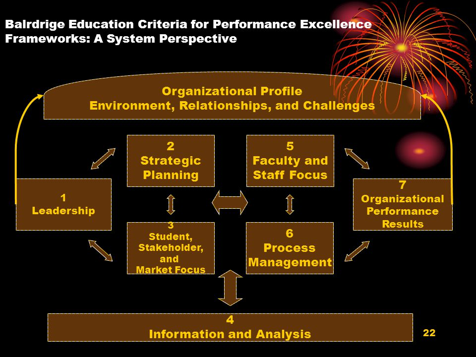 Organizational Profile Environment, Relationships, and Challenges