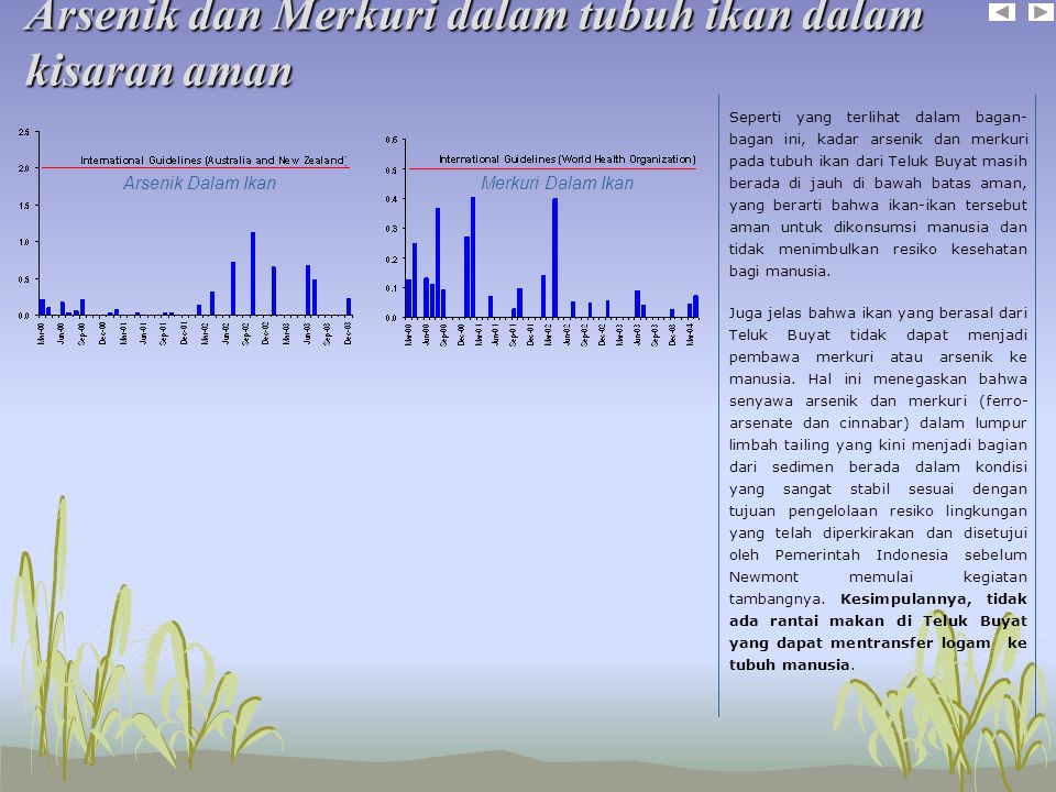 Arsenik dan Merkuri dalam tubuh ikan dalam kisaran aman