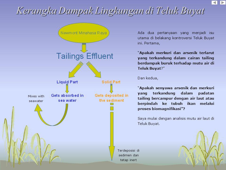 Kerangka Dampak Lingkungan di Teluk Buyat