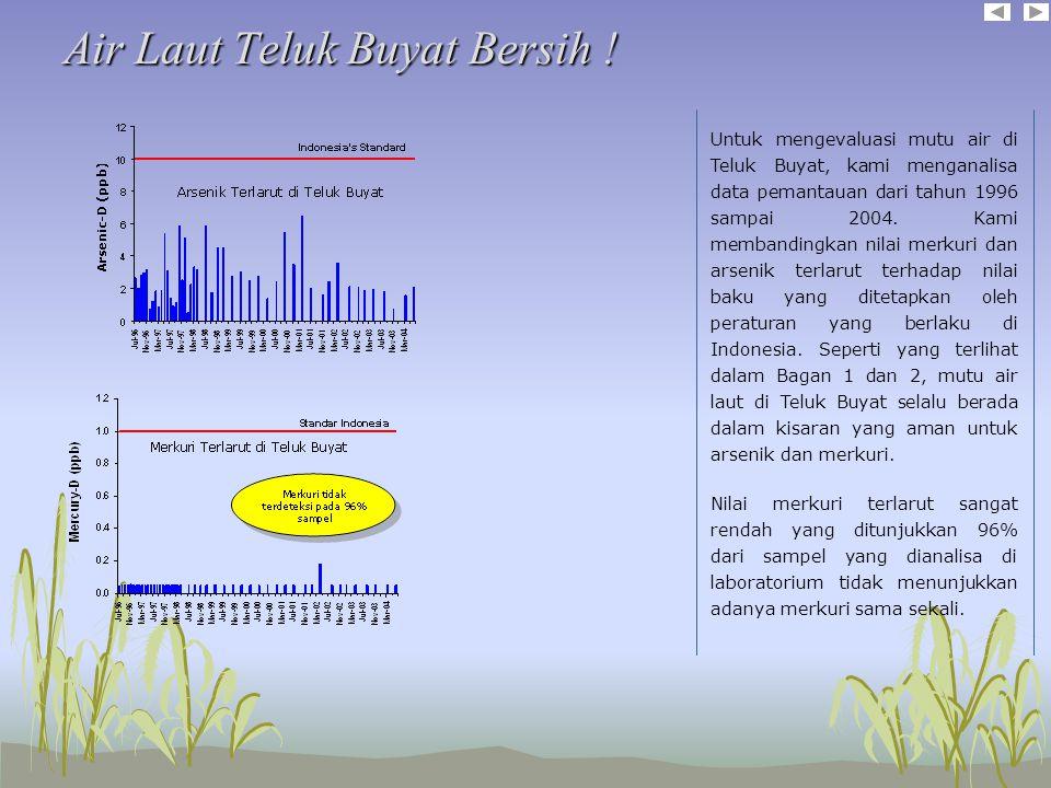 Air Laut Teluk Buyat Bersih !