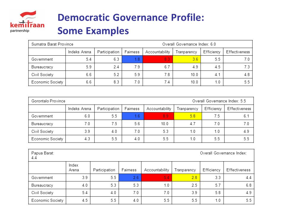 Democratic Governance Profile: Some Examples