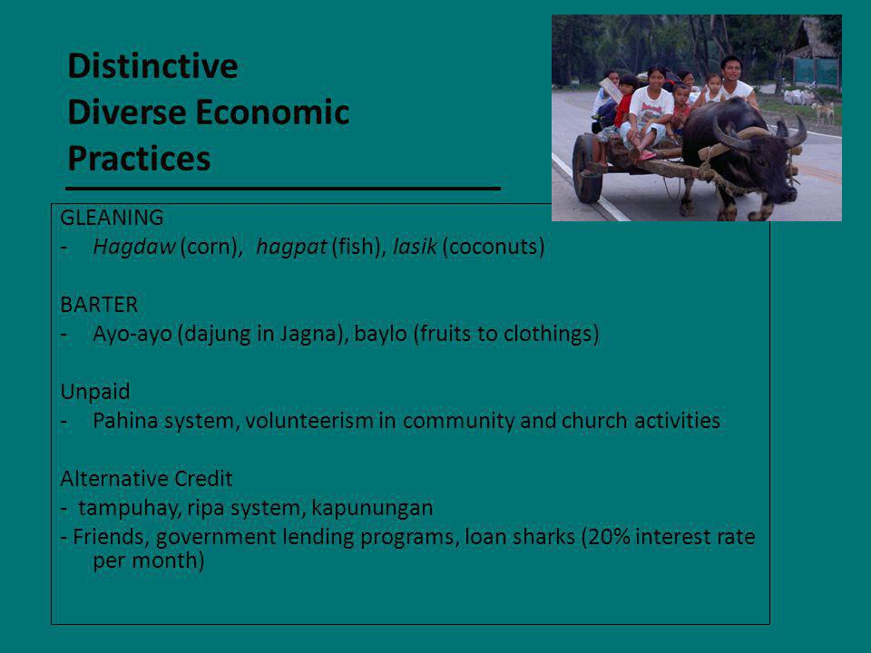Distinctive Diverse Economic Practices
