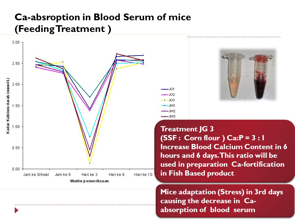 Ca-absroption in Blood Serum of mice (Feeding Treatment )