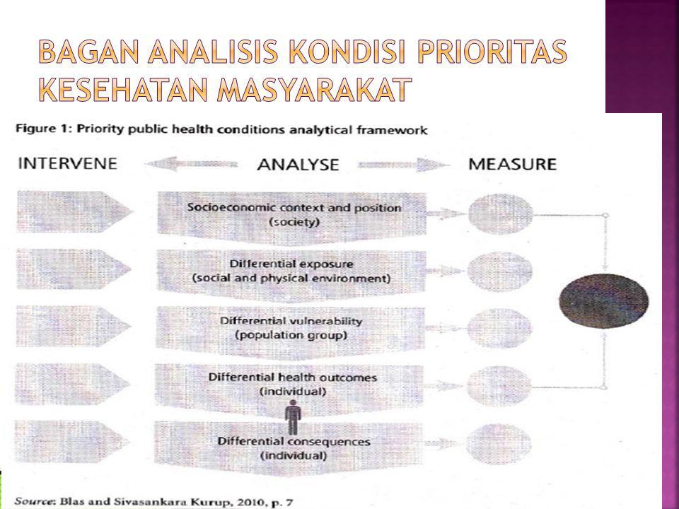 Bagan Analisis Kondisi Prioritas Kesehatan Masyarakat