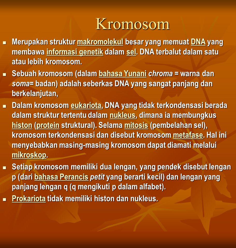 Kromosom Merupakan struktur makromolekul besar yang memuat DNA yang membawa informasi genetik dalam sel. DNA terbalut dalam satu atau lebih kromosom.