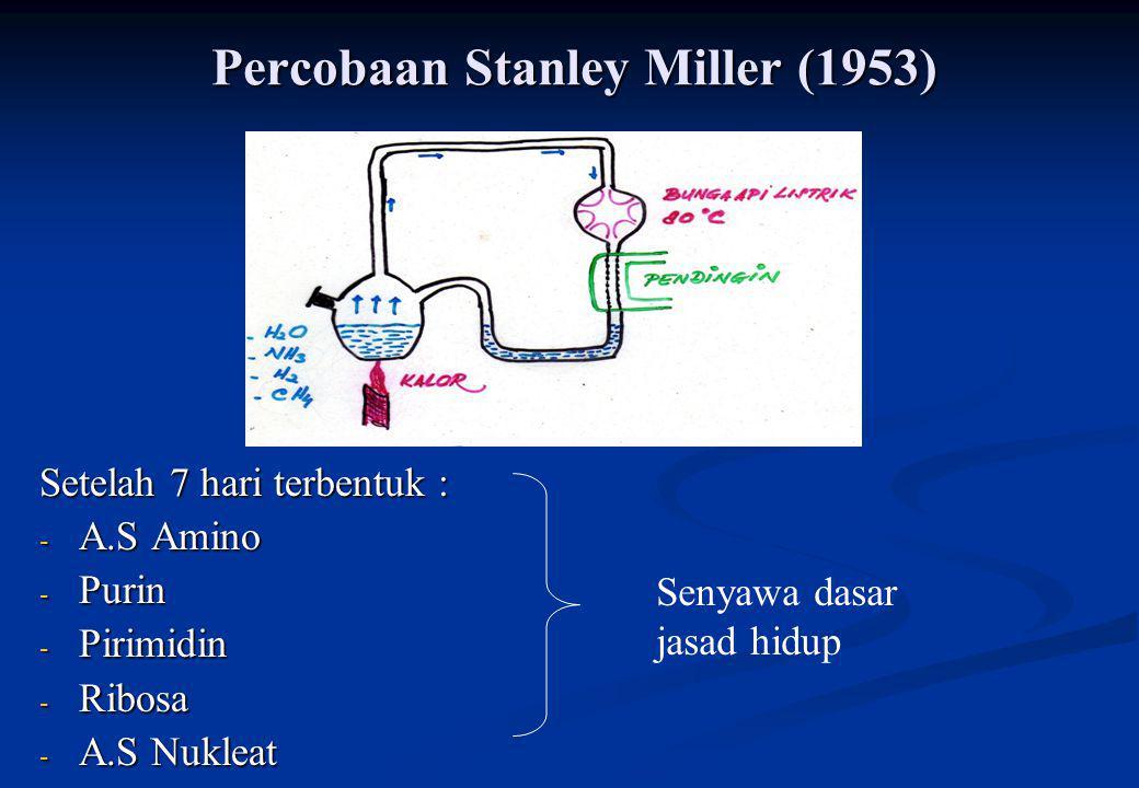 Percobaan Stanley Miller (1953)