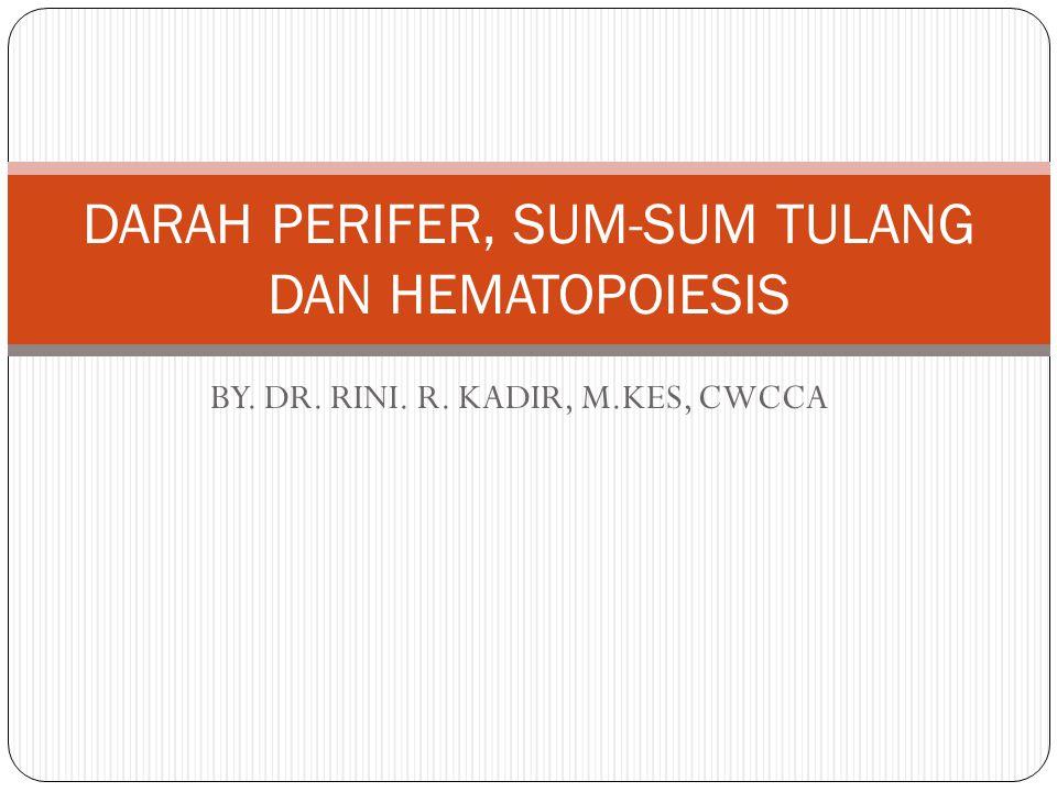 DARAH PERIFER, SUM-SUM TULANG DAN HEMATOPOIESIS