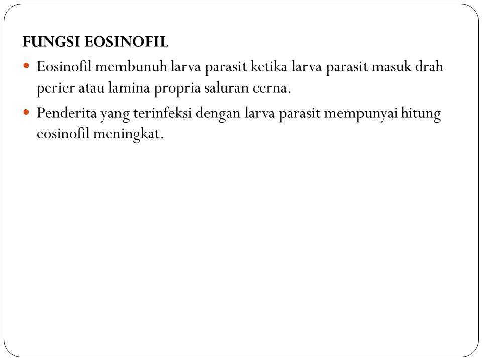FUNGSI EOSINOFIL Eosinofil membunuh larva parasit ketika larva parasit masuk drah perier atau lamina propria saluran cerna.