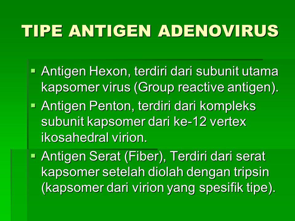 TIPE ANTIGEN ADENOVIRUS