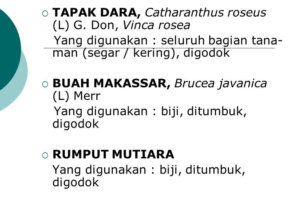 TAPAK DARA, Catharanthus roseus (L) G. Don, Vinca rosea