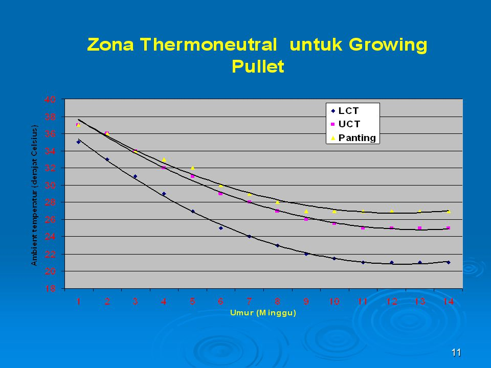 A thermo neutral Zone is also called a comfort zone in which the animal feel comfortable and do not need extra energy to keep the temperature frpm dropping or to dissipate heat to keep the body cool.