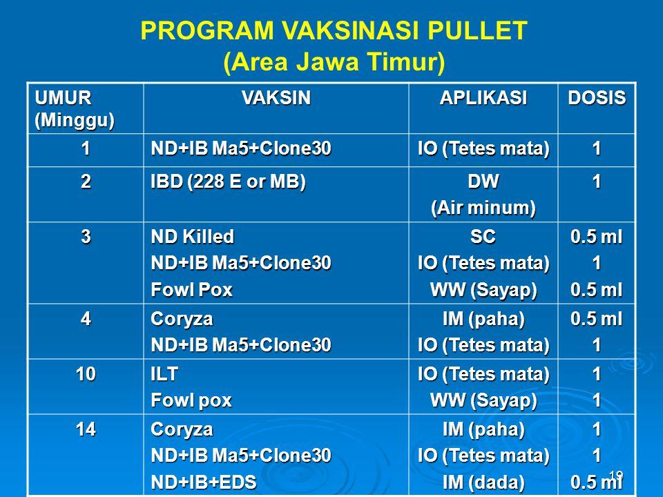 PROGRAM VAKSINASI PULLET