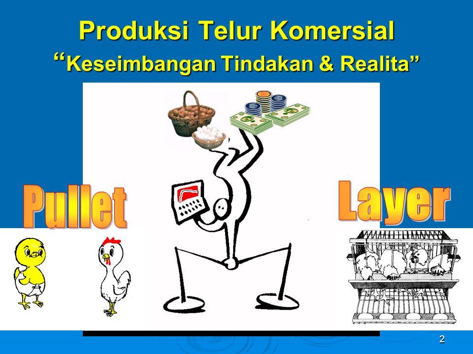 Produksi Telur Komersial Keseimbangan Tindakan & Realita