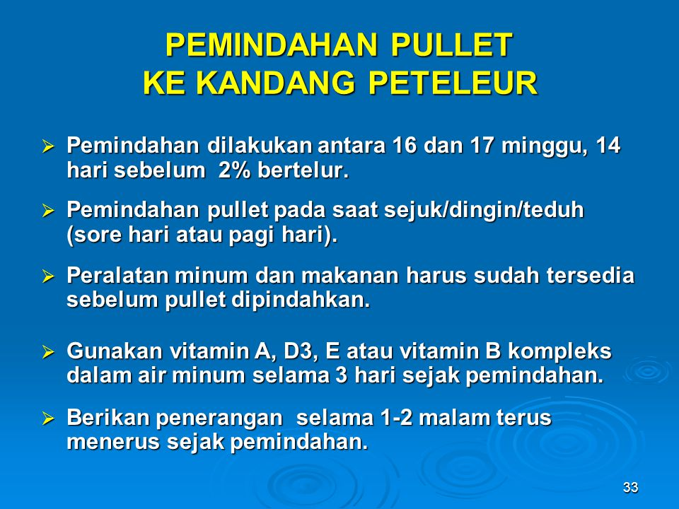 PEMINDAHAN PULLET KE KANDANG PETELEUR