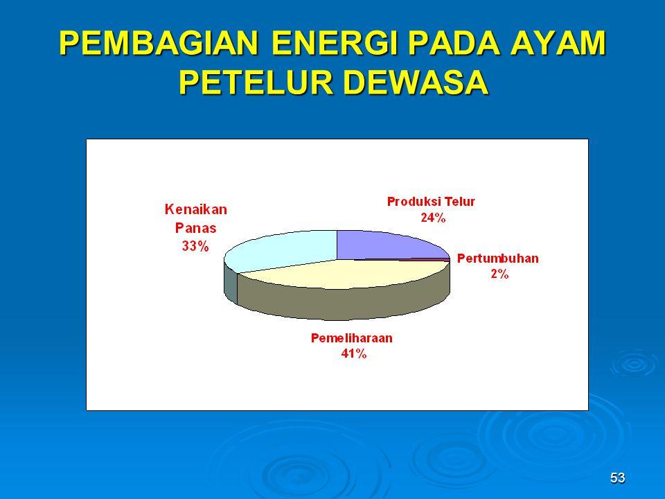 PEMBAGIAN ENERGI PADA AYAM PETELUR DEWASA
