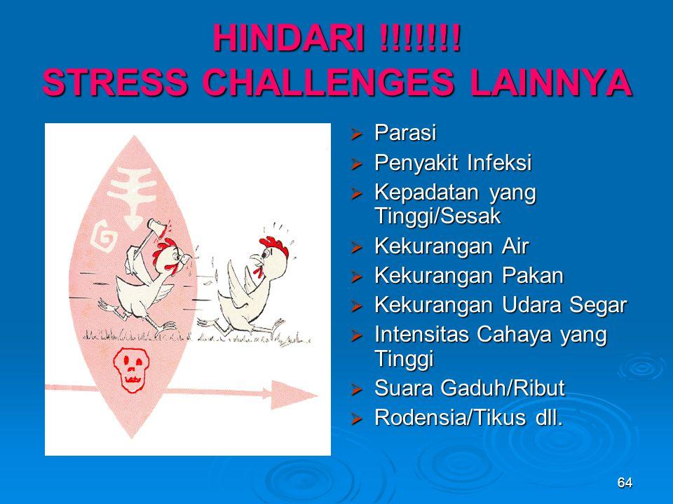 HINDARI !!!!!!! STRESS CHALLENGES LAINNYA