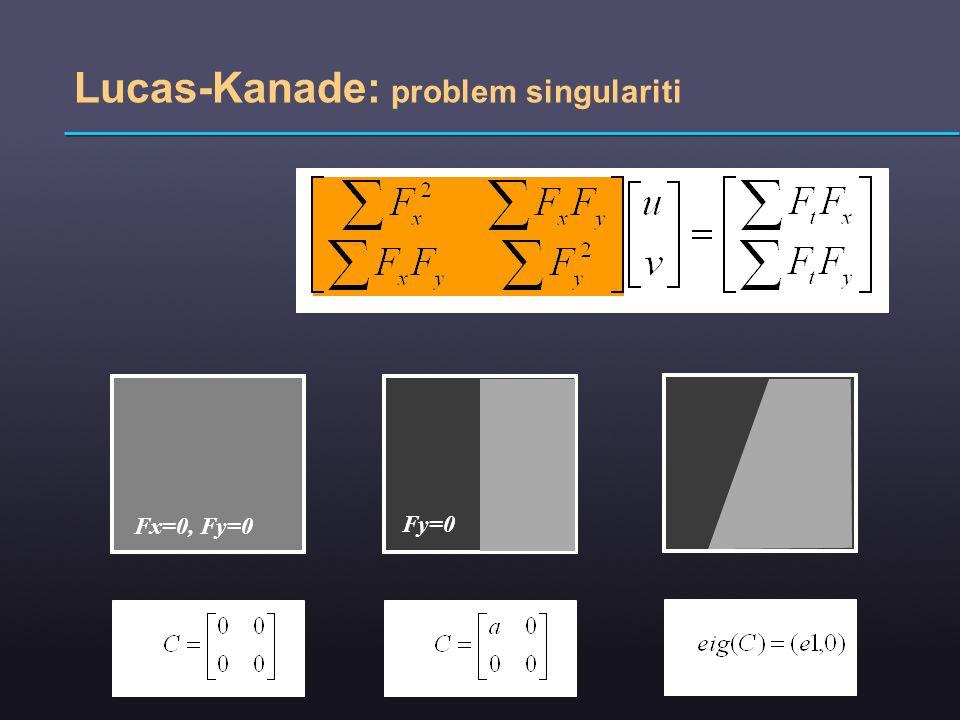 Lucas-Kanade: problem singulariti