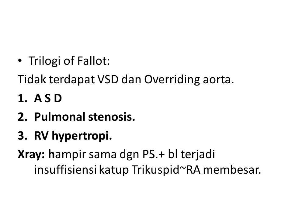 Trilogi of Fallot: Tidak terdapat VSD dan Overriding aorta. A S D. Pulmonal stenosis. RV hypertropi.