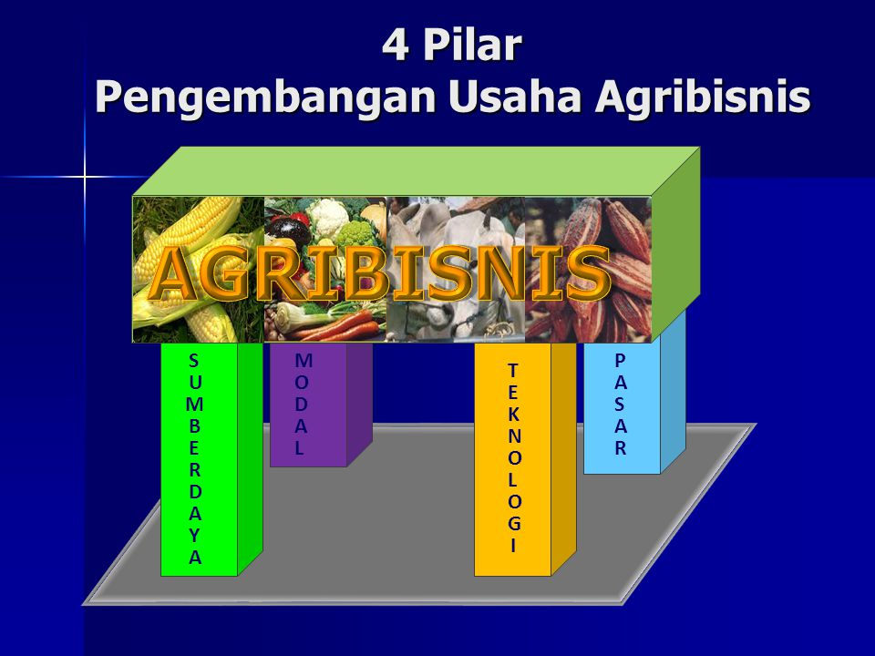4 Pilar Pengembangan Usaha Agribisnis