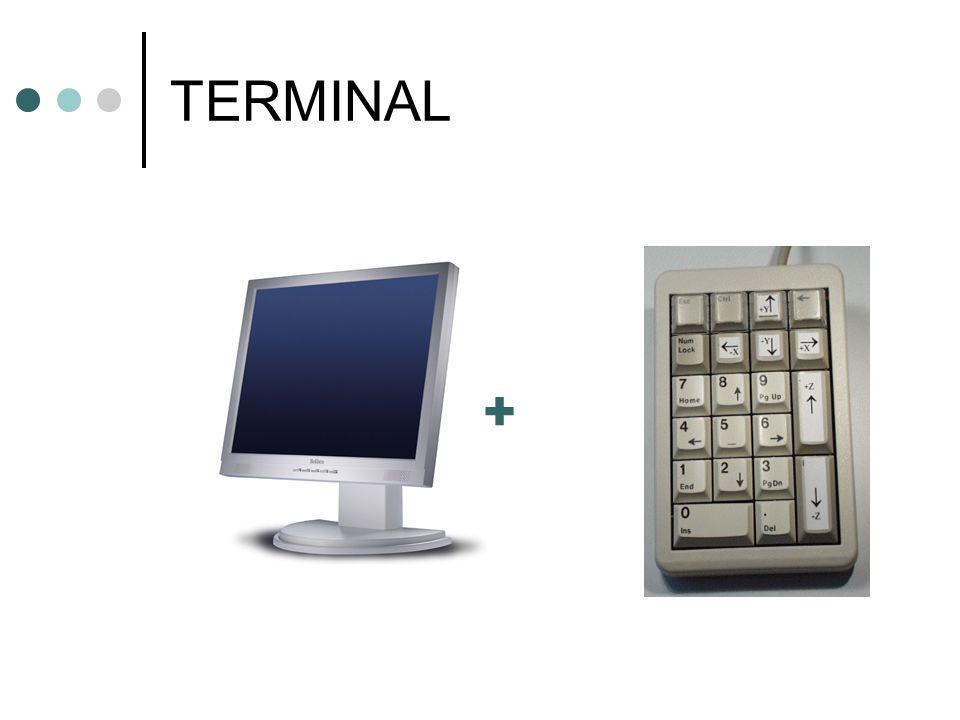 TERMINAL +