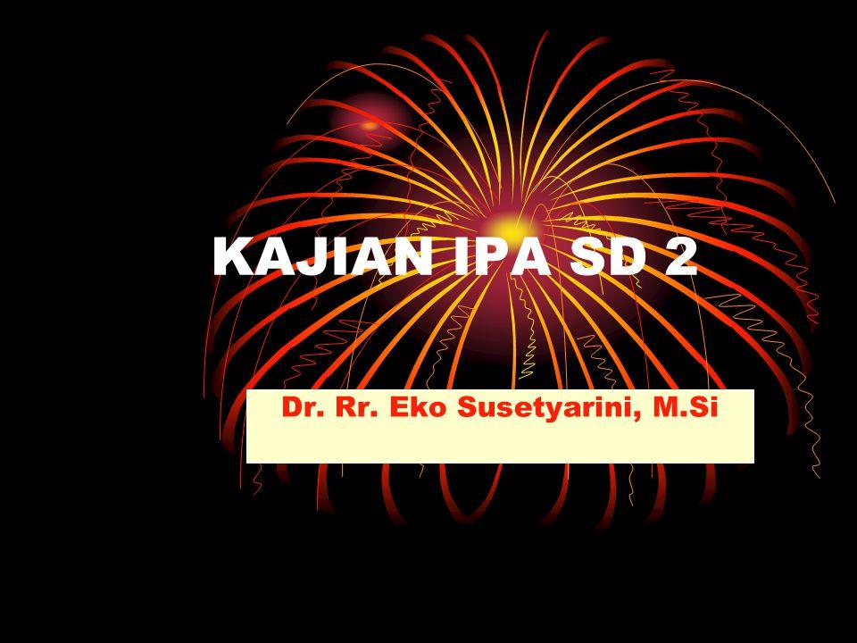 Dr. Rr. Eko Susetyarini, M.Si