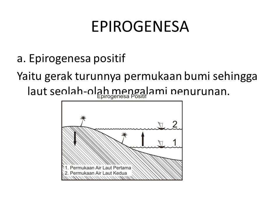EPIROGENESA a. Epirogenesa positif