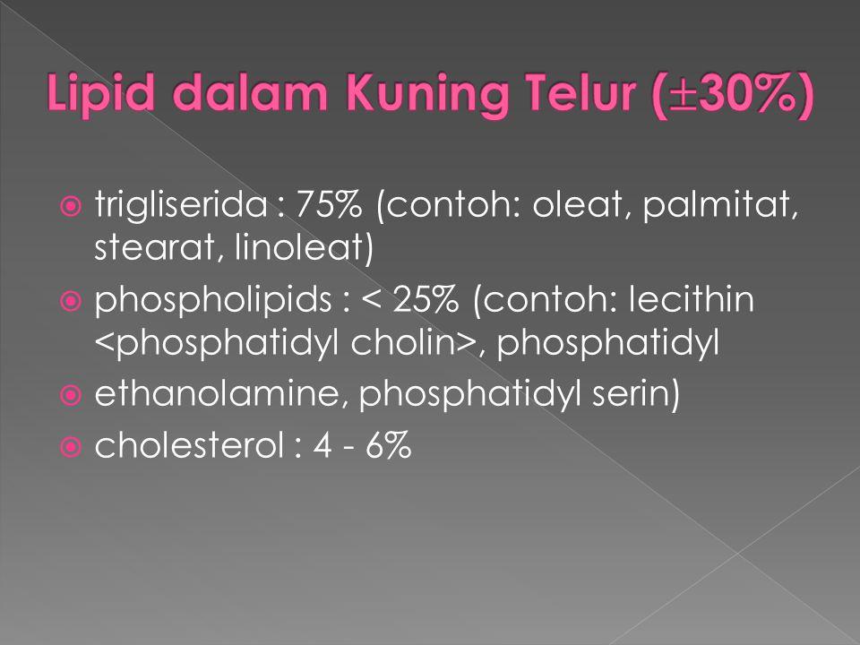 Lipid dalam Kuning Telur (30%)